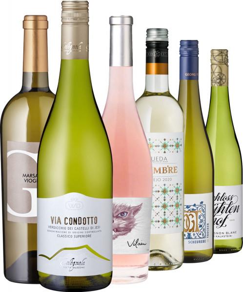 Vorteilspaket Sommerweine